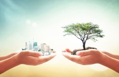 Contabilidade Ambiental: Entenda seus Benefícios