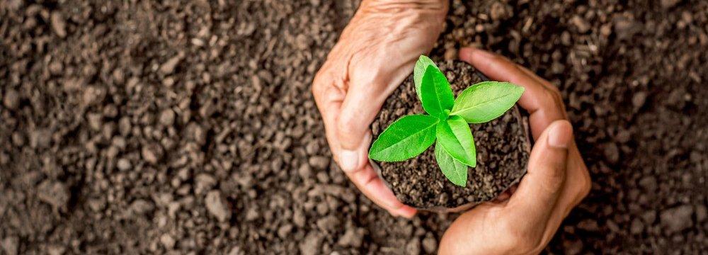 Processo de Licenciamento Ambiental: Você Sabe Como Funciona?