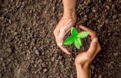 O Que é Licenciamento Ambiental — Você Sabe Como Funciona o Processo?