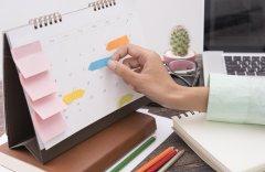 Conheça os Benefícios da Organização de Trabalho