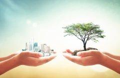 Descubra Quais Leis de Proteção Ambiental Nacional Sua Empresa Precisa Estar Ciente