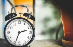 Conheça as Regras para Intervalo de Almoço nas Empresas