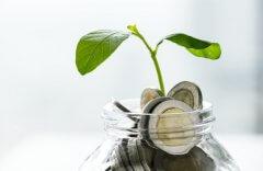 Tudo Que Você Precisa Saber Sobre Gestão Financeira Empresarial!